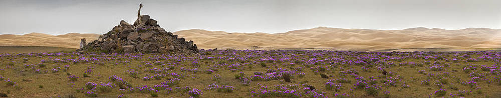 Sand Dunes And Flat Landscape Near Lake by Phil Borges