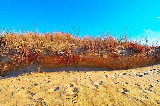 Sand Dunes by Eric Grissom