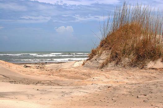 Mary Almond - Sand Dunes