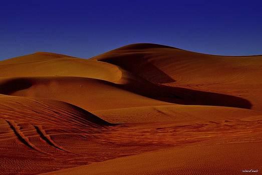 Sand Dunes by Vinod Nair