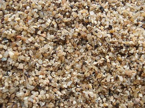 Gal Moran - sand