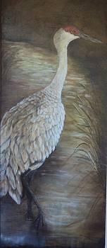 Sandhill Crane by Virginia Butler