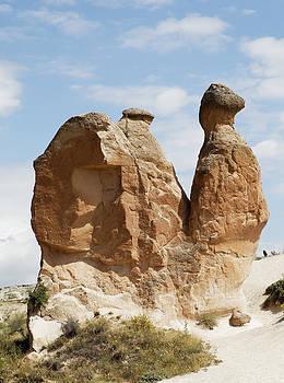 Kantilal Patel - Sandstone Snail