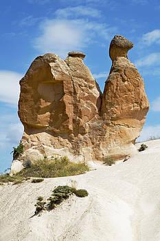 Kantilal Patel - Sandstone Snail Natures Sculpture