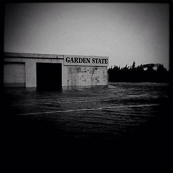 Sandy--Garden State by David Swanson