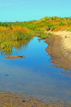 Sandy Hook Bay by Carol Bruno