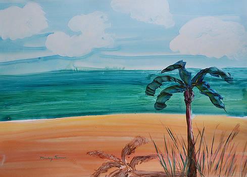 Sandy Palm by Mickey Krause