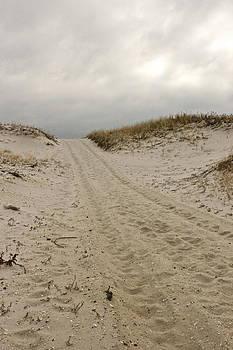 Sandy Road by Dan Norris