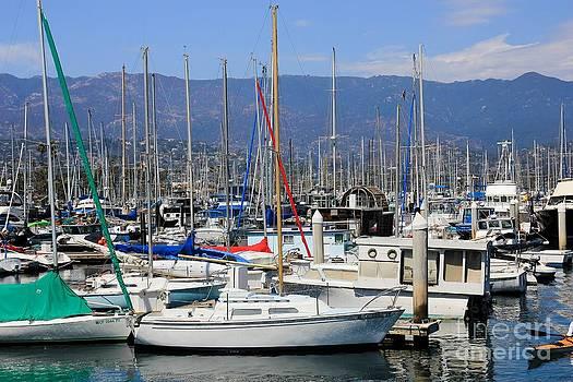 Sophie Vigneault - Santa Barbara Marina