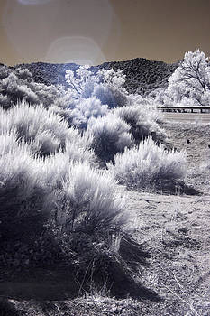 Santa Fe - 7 by T R Maines