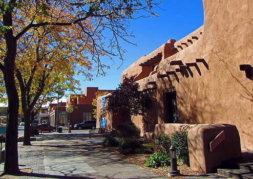 Elizabeth Rose - Santa Fe Art Museum Street Scene
