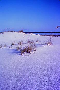 Santa Rosa Dunes by Bob Whitt