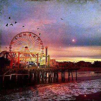#santamonica  #pier @pacpark by Denise Taylor