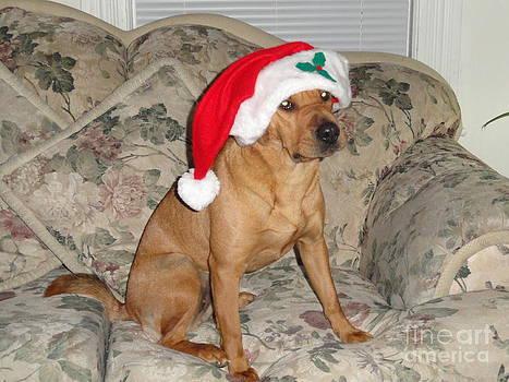 Santa's Lil' Helping Hound by Daniel Henning