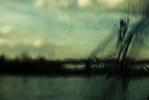 Sava River Belgrade II by Grebo Gray