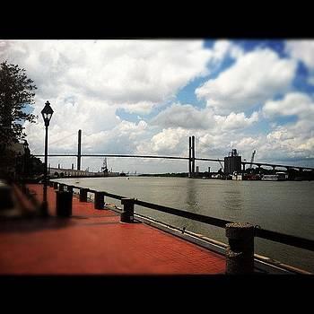 Savannah by Colleen Sullivan