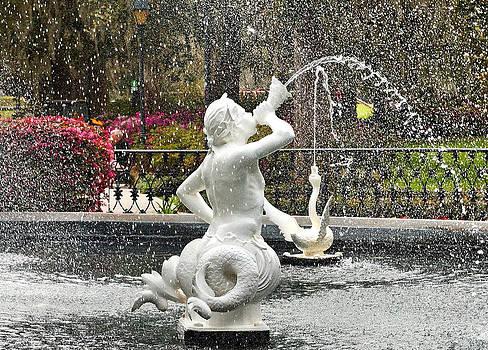 Carmen Del Valle - Savannah Forsyth Park