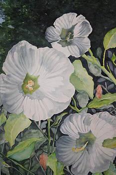 Savannah River Flora by Wendy Cunico