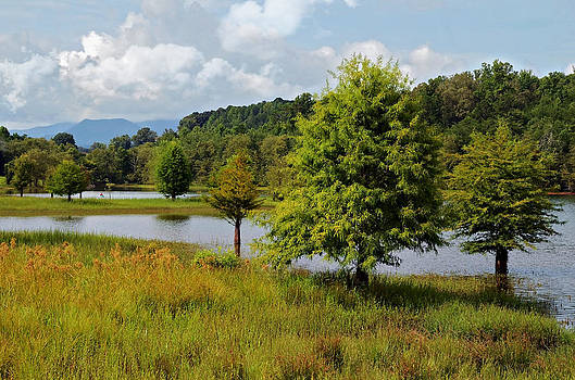 Scenic Lake with Mountains by Susan Leggett