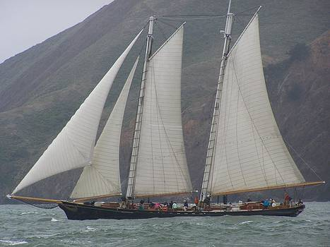 Schooner America and Marin Headlands by Patty Descalzi