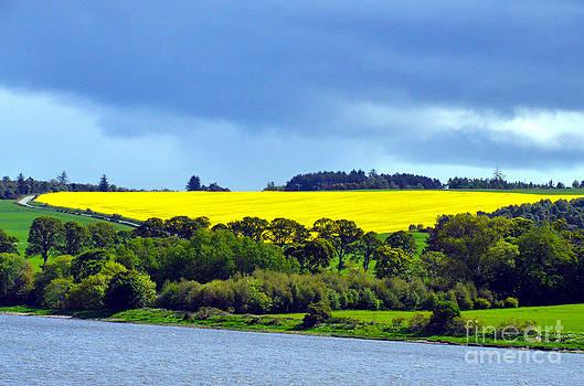 Pravine Chester - Scottish Countryside