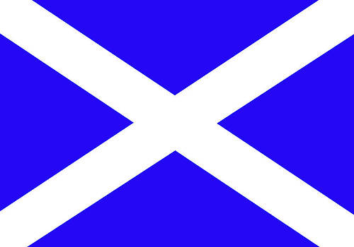 Scottish flag by Christopher Rowlands