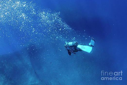 Sami Sarkis - Scuba diver by a shipwreck underwater