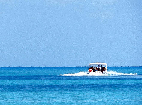 Stuart Brown - Sea And Tourist Boat