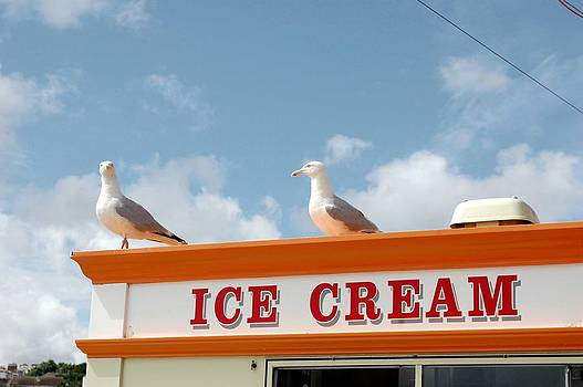 Sea Gulls Love Ice Cream by Simon Clare