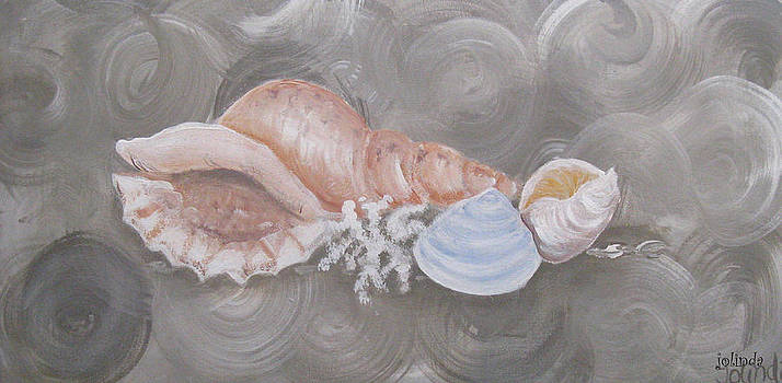 Sea Shells by Joanne Seath