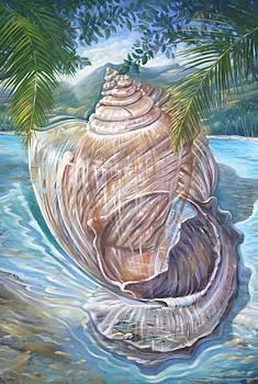 Sea Side Shells by Jorge Cardenas