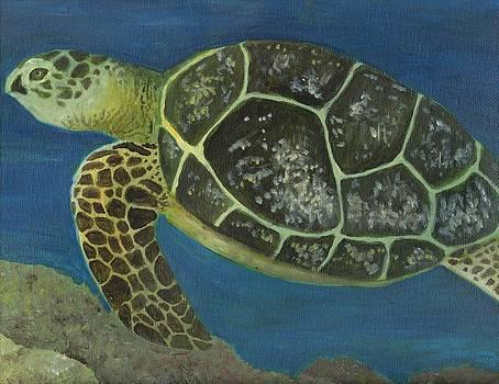Sea Turtle by Heather Walker