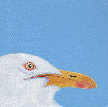 Seagull by Laurel Porter-Gaylord