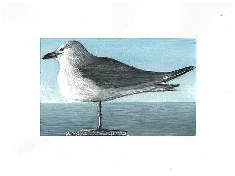 Seagull on a Post  by Jim  Romeo