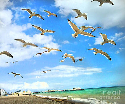 Seagulls at Worthing Sussex by Heather Lennox