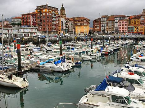 Seaport of Bermeo by Alfredo Rodriguez
