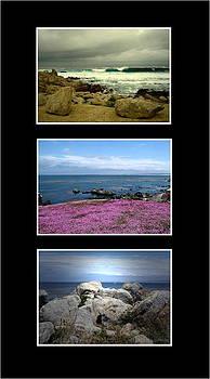 Joyce Dickens - Seascape Triptych