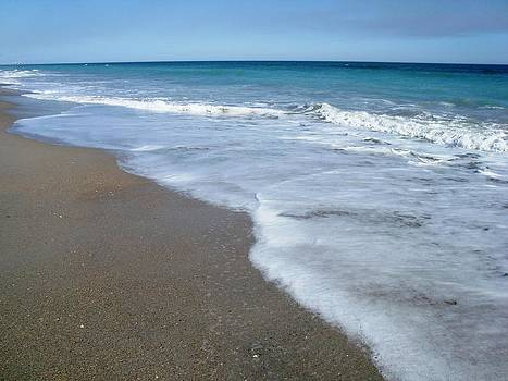 Seascape Wrightsville Beach NC  by Joan Meyland