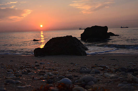 Seashells and Sunrise by Ken  Collette