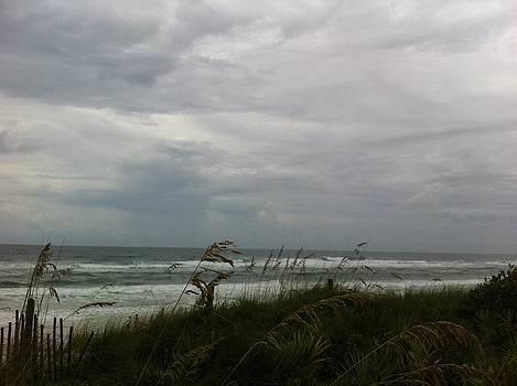 Seaside 2 by Rebecca Hale