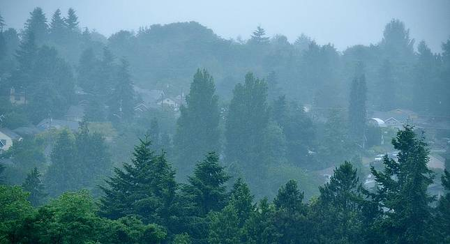 Seattle Morning Fog by Ami Tirana