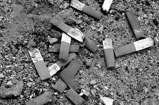 Lisa Phillips - Secondhand Smoke