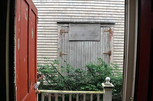 Daryl Macintyre - Secret Door