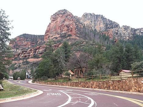 Sedona Arizona by David Stich