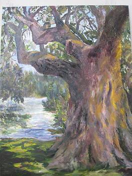 Sentry Oak by Albert Fendig