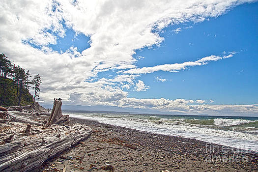 Sequim Beach by Molly Heng