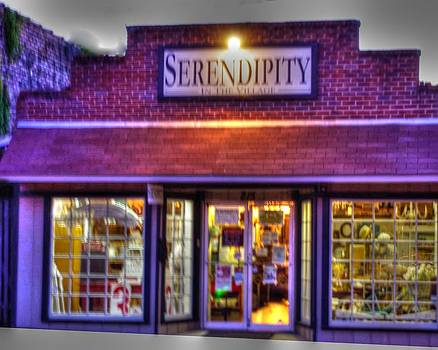 Serendipity Antiques by Jenny Bauer