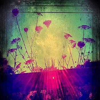 Serene Sanctuary by Tina Marie