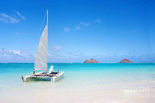 Serene Tropical Beach by Michael Sweet