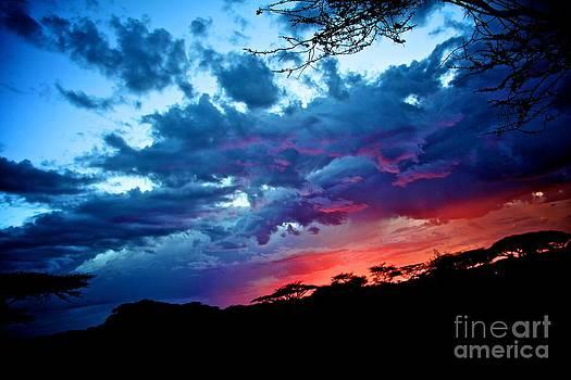 Serengeti Sunset by Matthew Keoki Miller